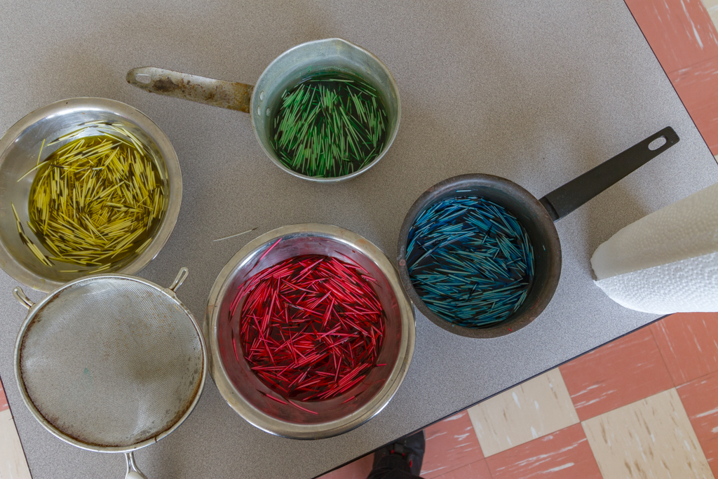 Porcupine quills in dye