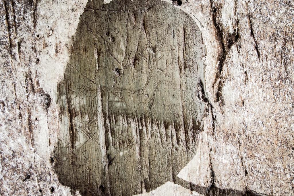 Caribou Carving